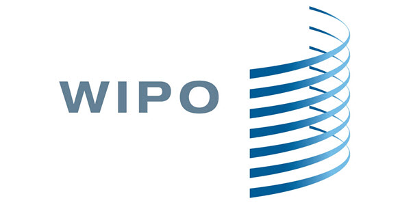 WIPO reaches 50,000 UDRP cases since 1999 and has an 11% increase in 2020