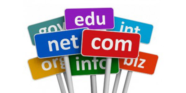 Global domain name market: 44% of domains are ccTLDs and 56% are gTLDs