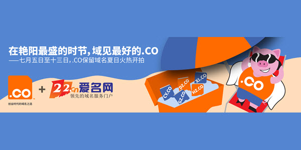 .CO Has Its First Auction In China On 22.CN (CY.co, XD.co, XN.co, etc.)